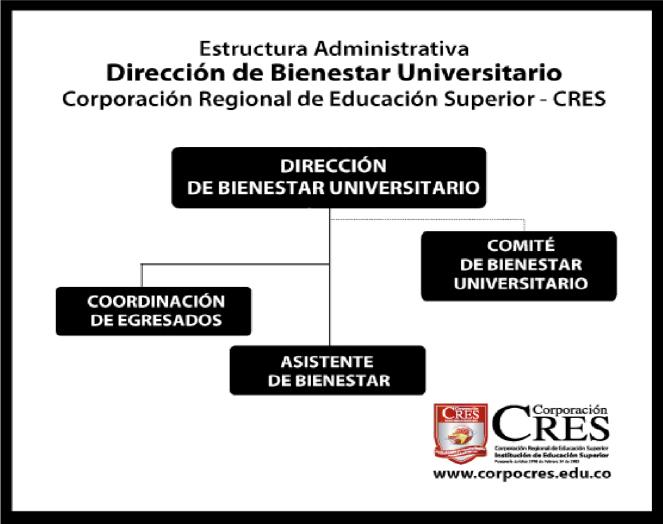 Bienestar Universitario Estructura