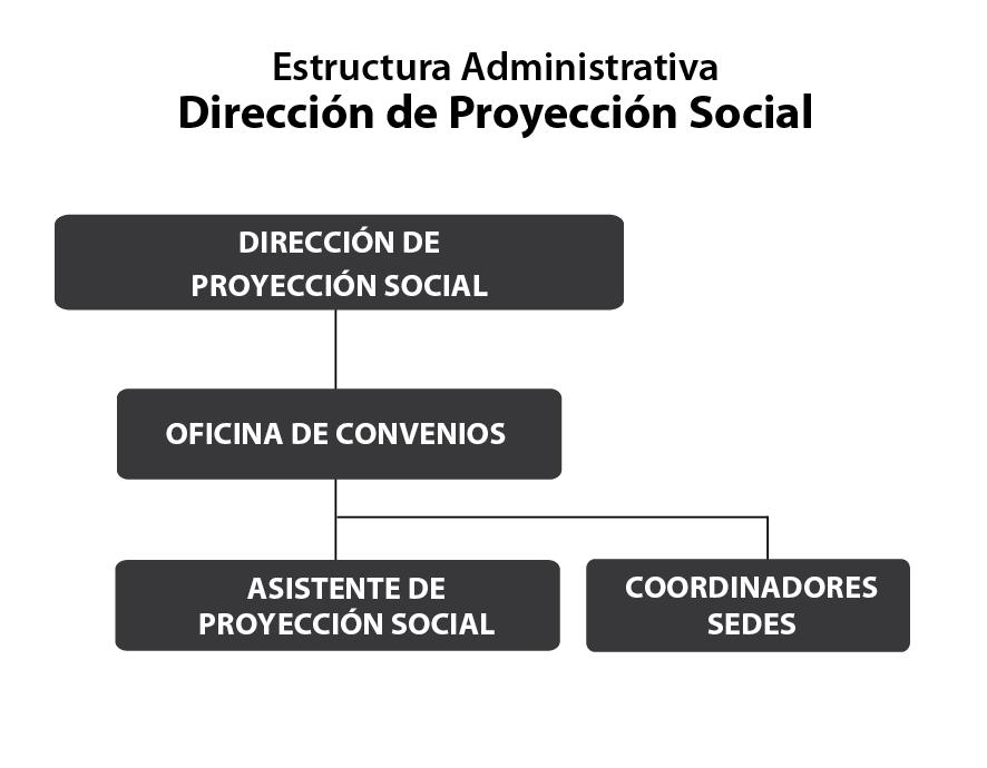 Organigrama por áreas Proyección Social